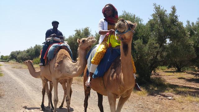 Laurat riding a camel